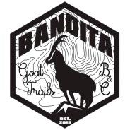bandita-vect2-trasp